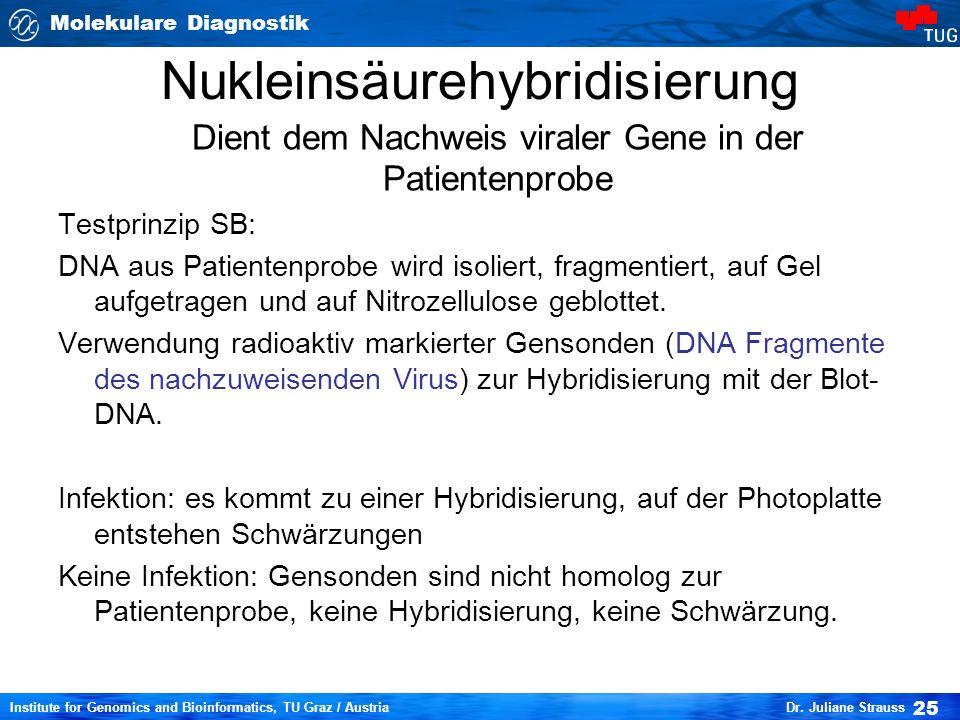 Nukleinsäurehybridisierung