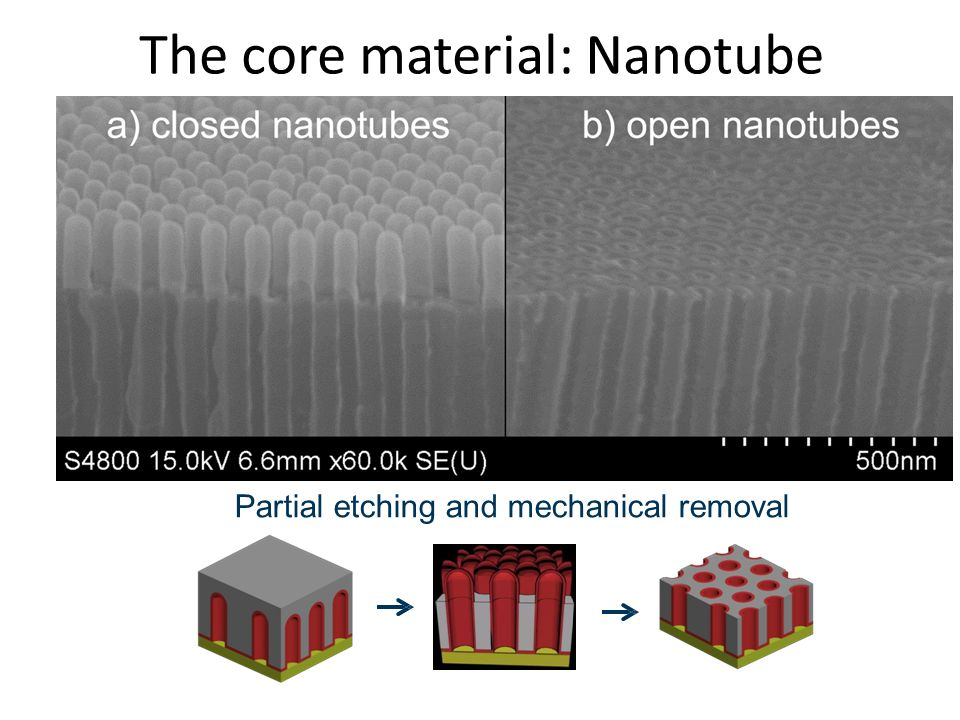 The core material: Nanotube opening