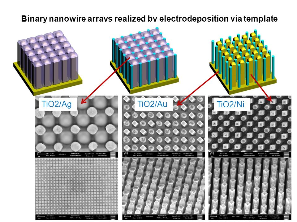 Binary nanowire arrays realized by electrodeposition via template