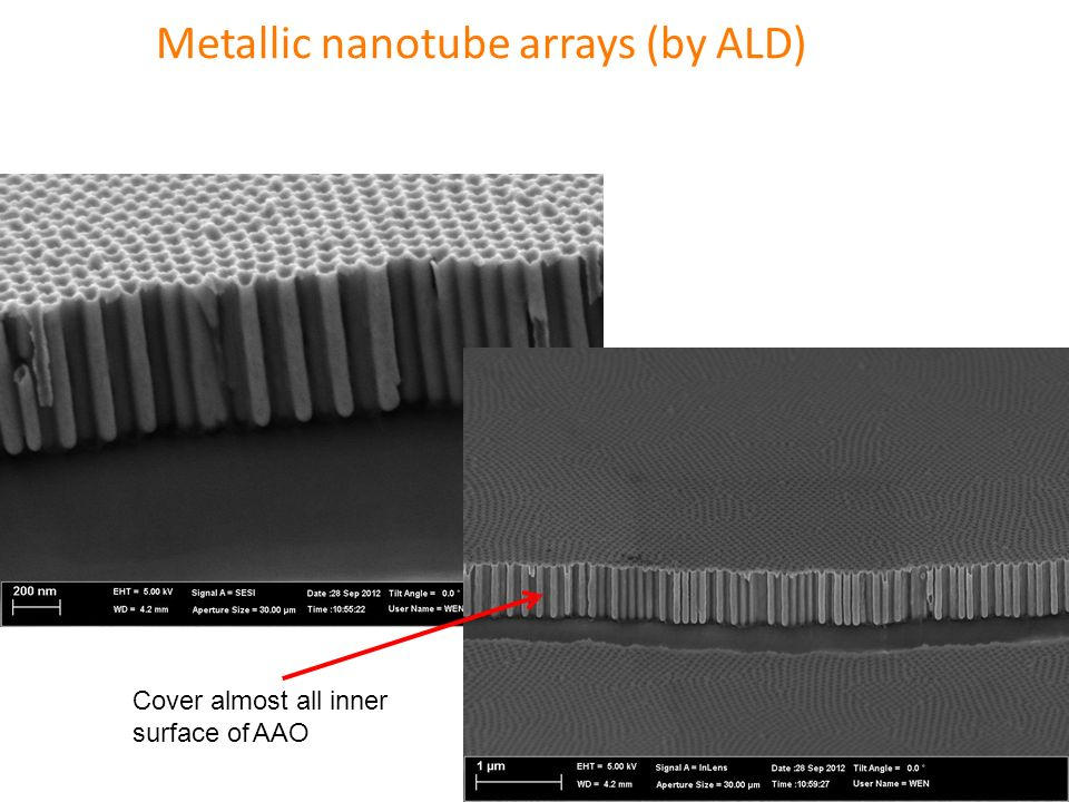 Metallic nanotube arrays (by ALD)