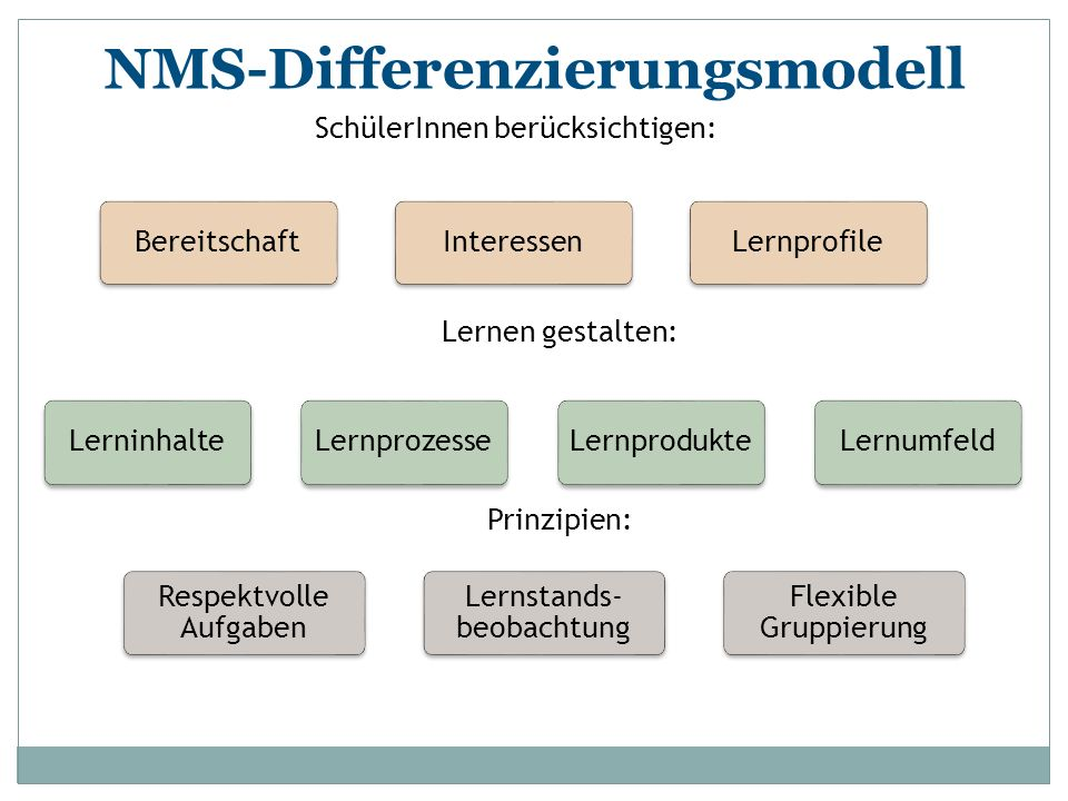 NMS-Differenzierungsmodell