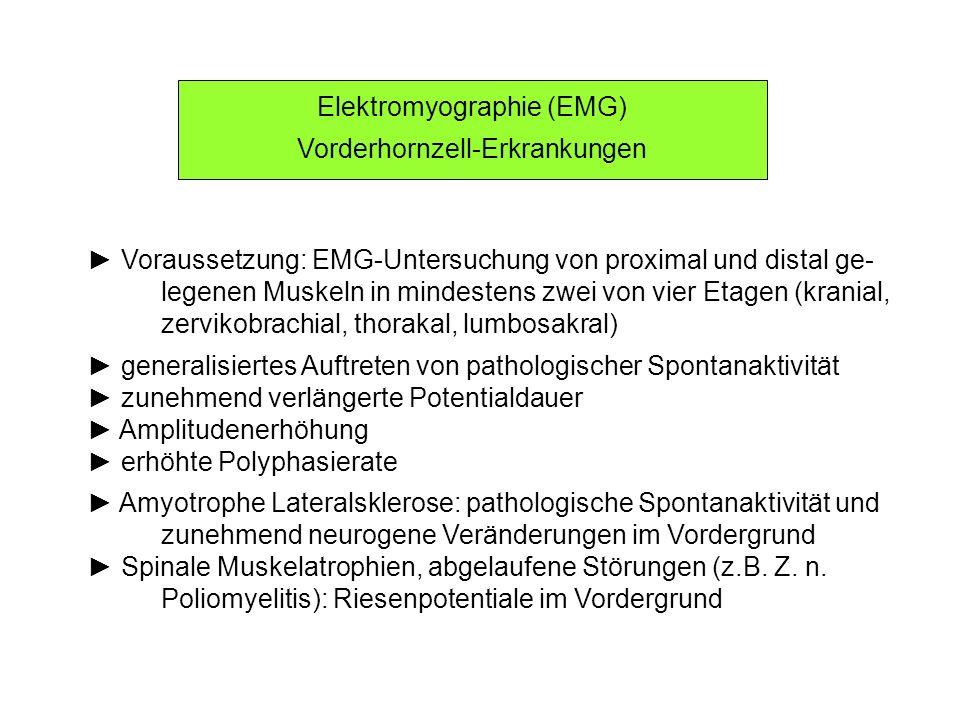 Elektromyographie (EMG) Vorderhornzell-Erkrankungen