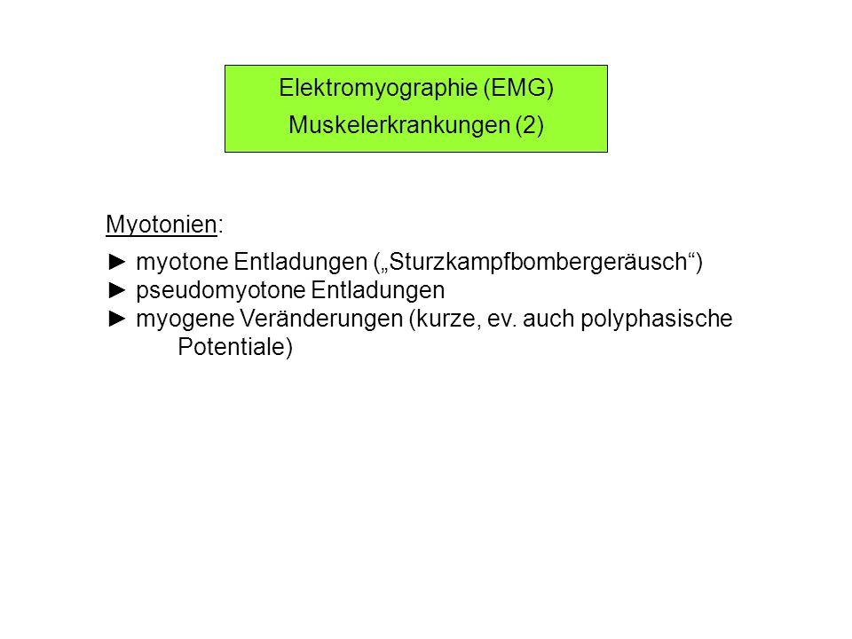 Elektromyographie (EMG) Muskelerkrankungen (2)