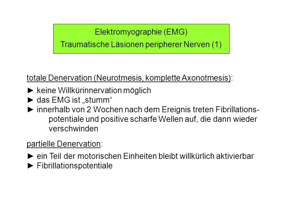 Elektromyographie (EMG) Traumatische Läsionen peripherer Nerven (1)