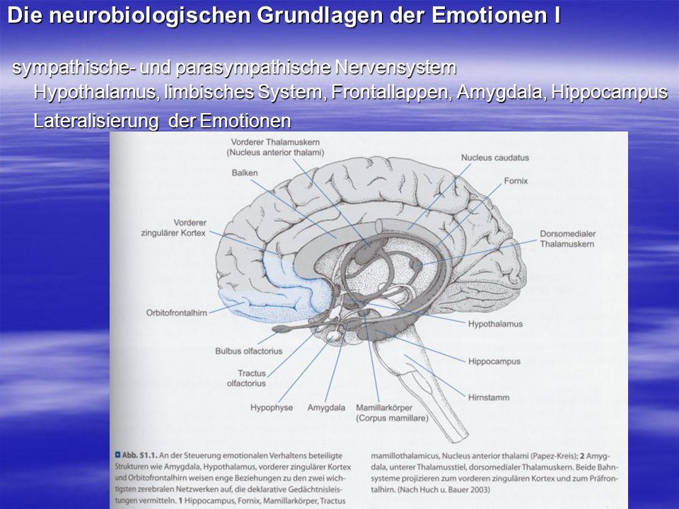 Die neurobiologischen Grundlagen der Emotionen I