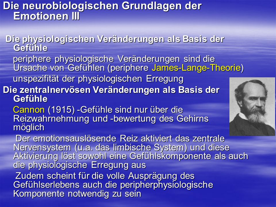 Die neurobiologischen Grundlagen der Emotionen III
