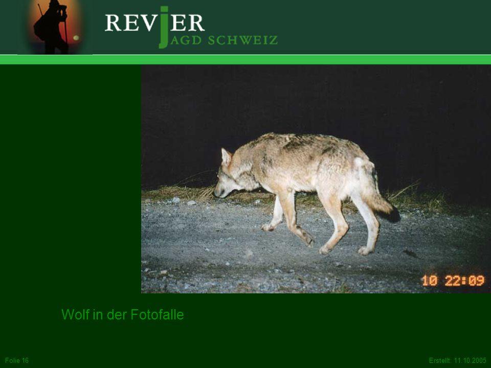 Sie sind entgegen dem, was gelegentlich behauptet wird, auch nicht gegen die Grossraubtiere (Luchs, Wolf, Bär). Wenn sie auf natürlichem Weg zu uns zurück kehren, freuen sich die meisten von uns Jägern darüber. Keine Freude haben wir, wenn sie der übernutzten Natur durch künstliche Aussetzungen aufgedrängt werden.