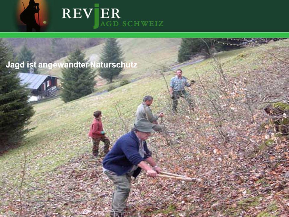 Jagd ist angewandter Naturschutz