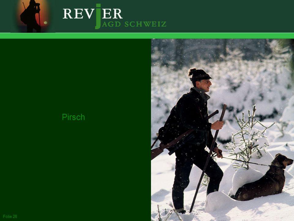 Pirsch Pirsch: Der Jäger schleicht sich gegen den Wind an das Wild heran, identifiziert es und bringt es allenfalls zur Strecke.