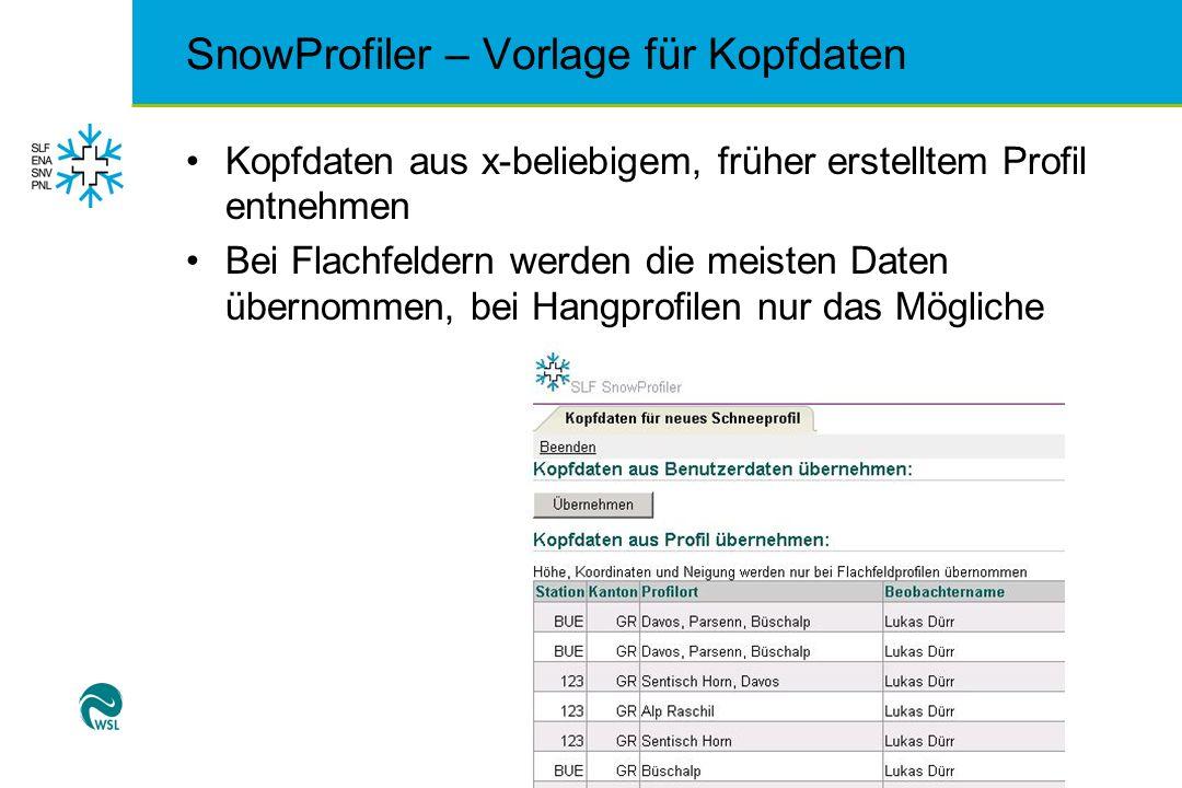 SnowProfiler – Vorlage für Kopfdaten