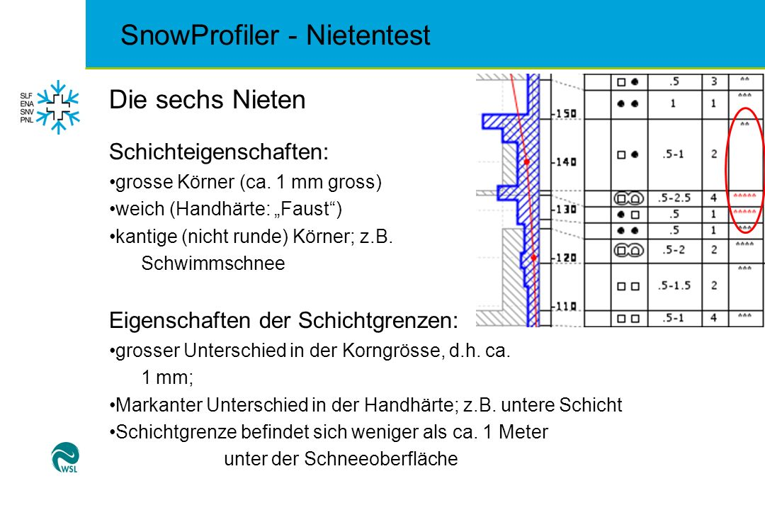 SnowProfiler - Nietentest