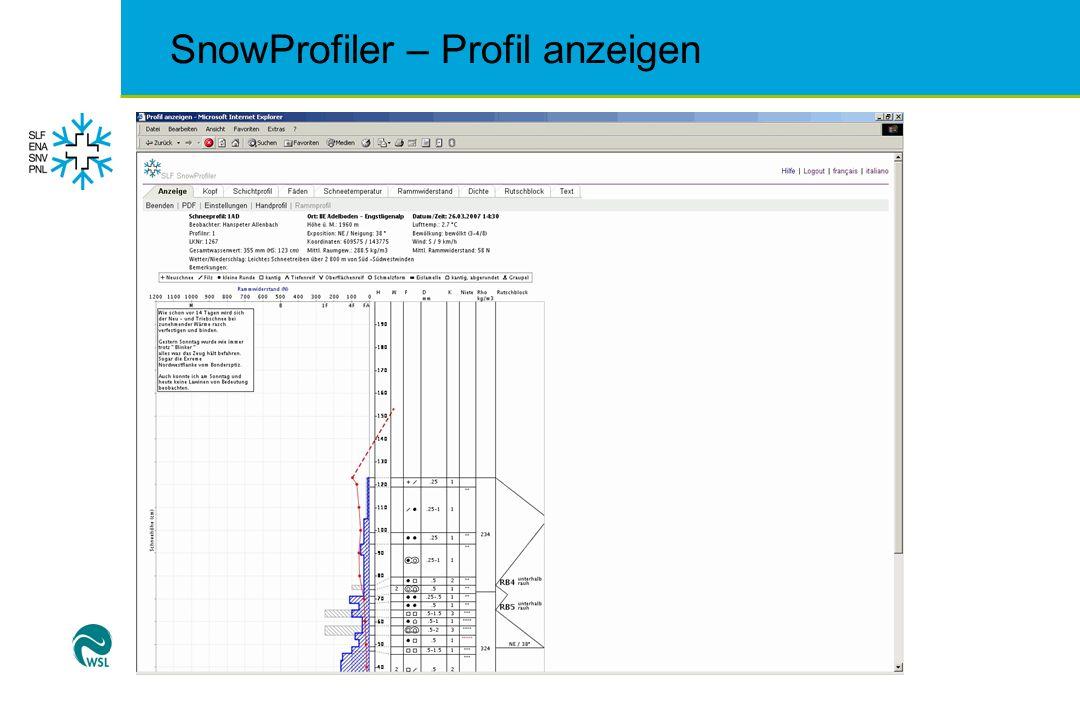 SnowProfiler – Profil anzeigen