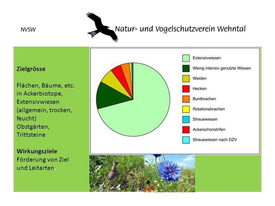 Zielgrösse Flächen, Bäume, etc. in Ackerbiotope, Extensivwiesen (allgemein, trocken, feucht)