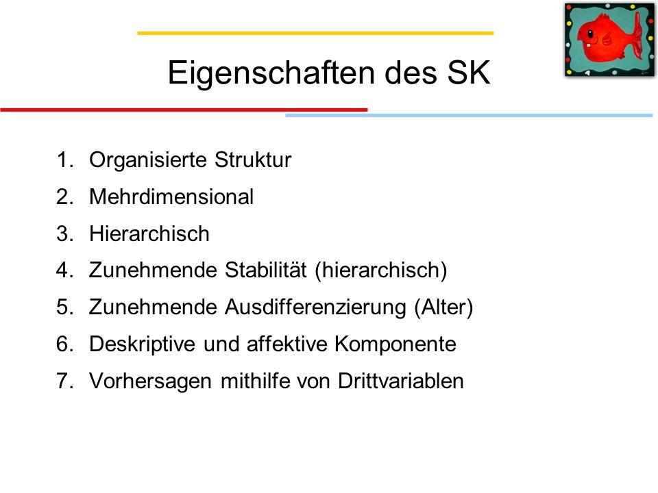 Eigenschaften des SK Organisierte Struktur Mehrdimensional