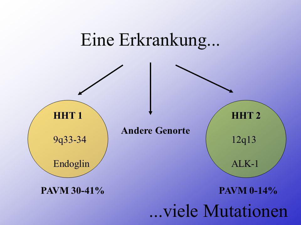 Eine Erkrankung... ...viele Mutationen HHT 1 9q33-34 Endoglin HHT 2
