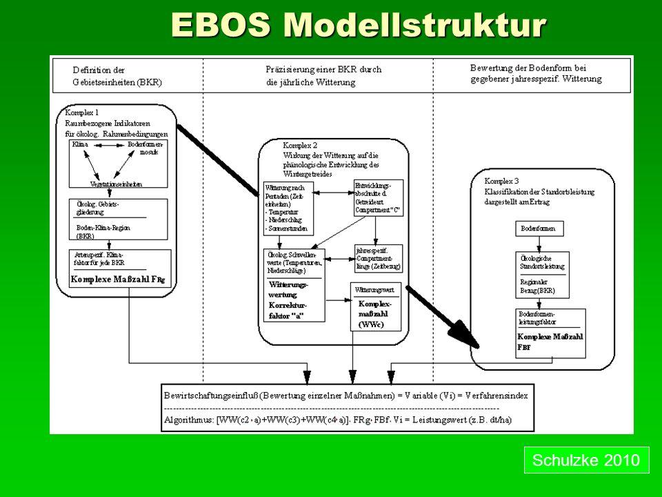 EBOS Modellstruktur 28.03.2017 Schulzke 2010