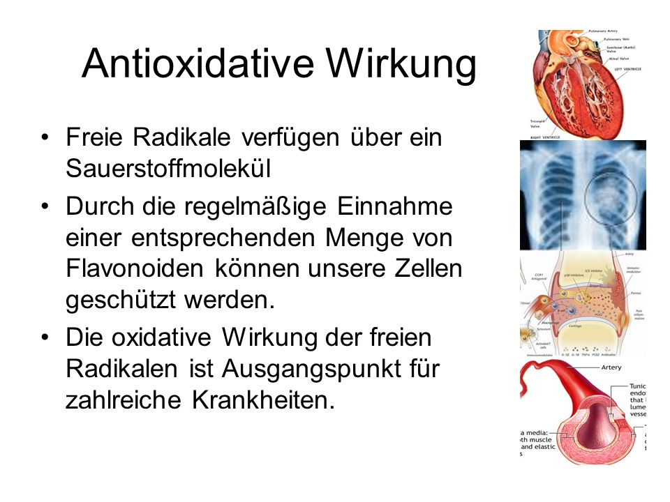 Antioxidative Wirkung