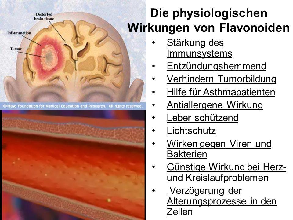 Die physiologischen Wirkungen von Flavonoiden