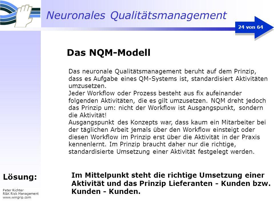 Das NQM-Modell Lösung: