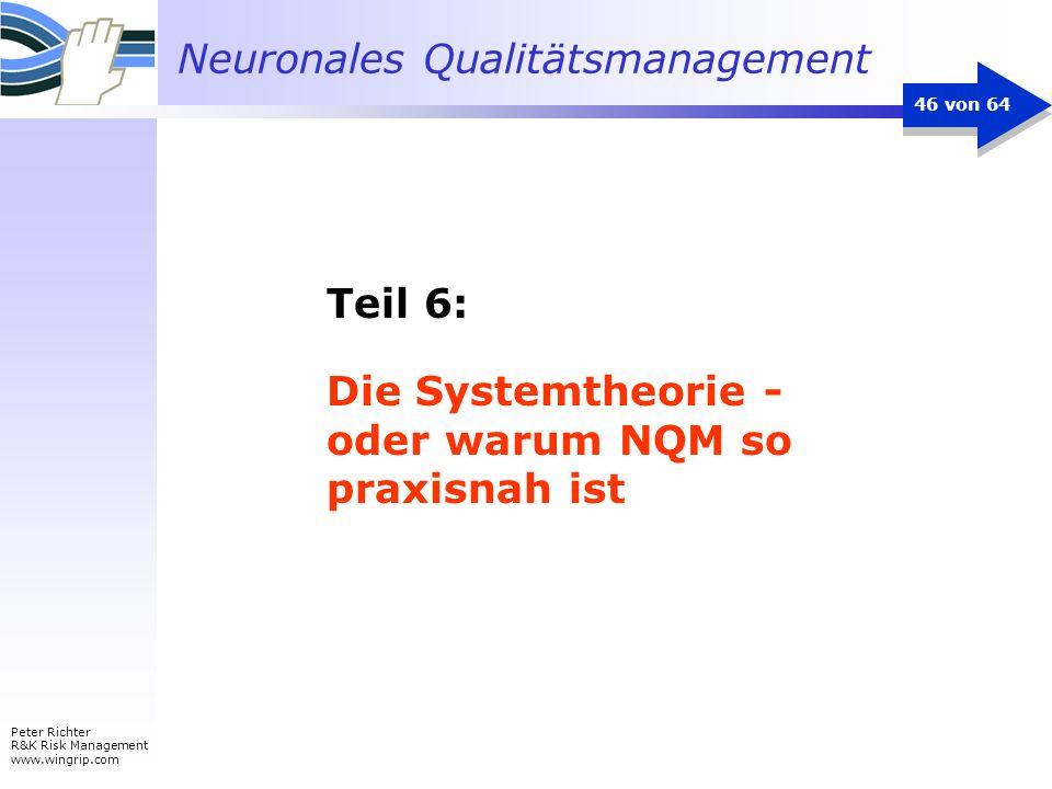 Die Systemtheorie - oder warum NQM so praxisnah ist