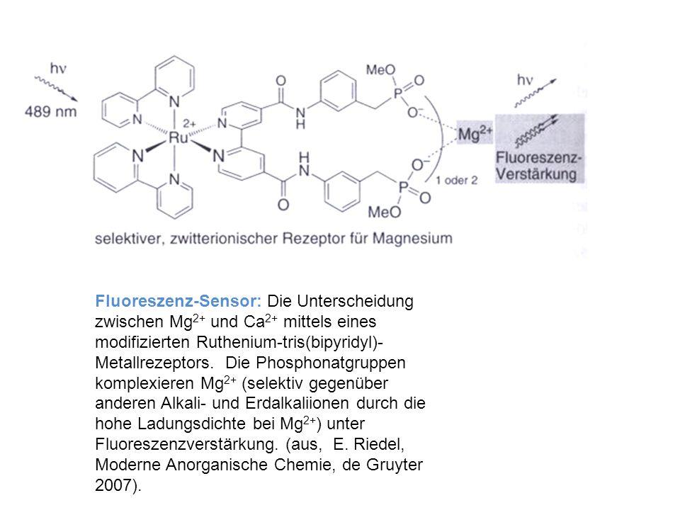 Fluoreszenz-Sensor: Die Unterscheidung zwischen Mg2+ und Ca2+ mittels eines modifizierten Ruthenium-tris(bipyridyl)-Metallrezeptors.
