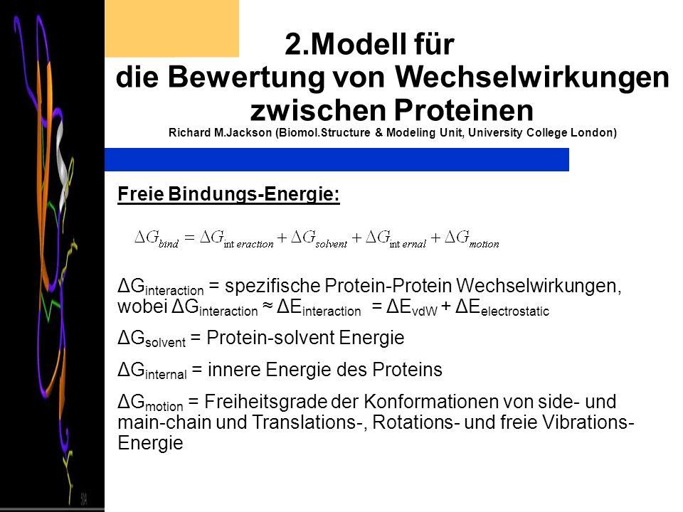 2.Modell für die Bewertung von Wechselwirkungen zwischen Proteinen Richard M.Jackson (Biomol.Structure & Modeling Unit, University College London)