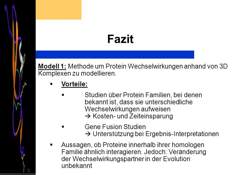 Fazit Modell 1: Methode um Protein Wechselwirkungen anhand von 3D Komplexen zu modellieren. Vorteile: