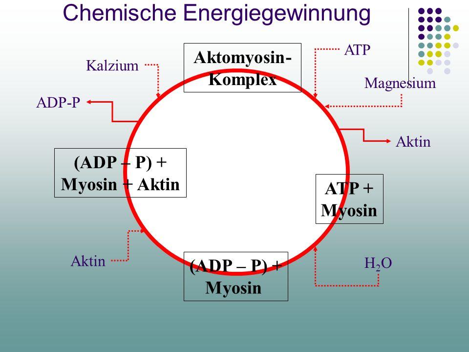 Chemische Energiegewinnung