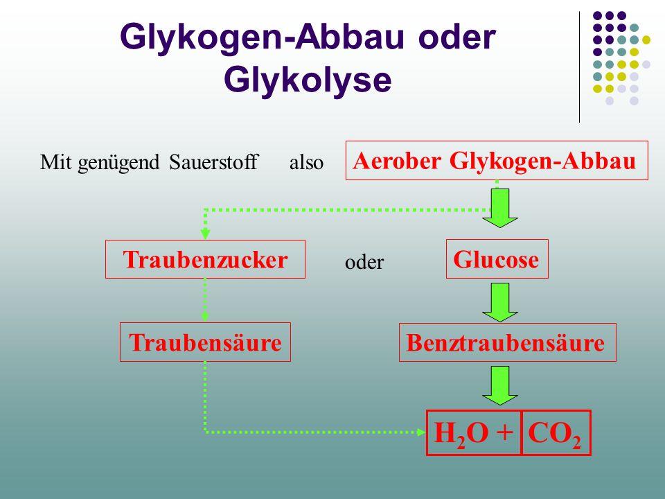 Glykogen-Abbau oder Glykolyse