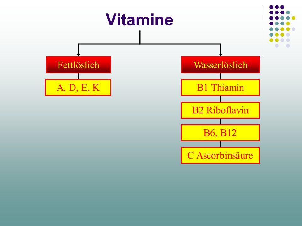 Vitamine Fettlöslich Wasserlöslich A, D, E, K B1 Thiamin B2 Riboflavin