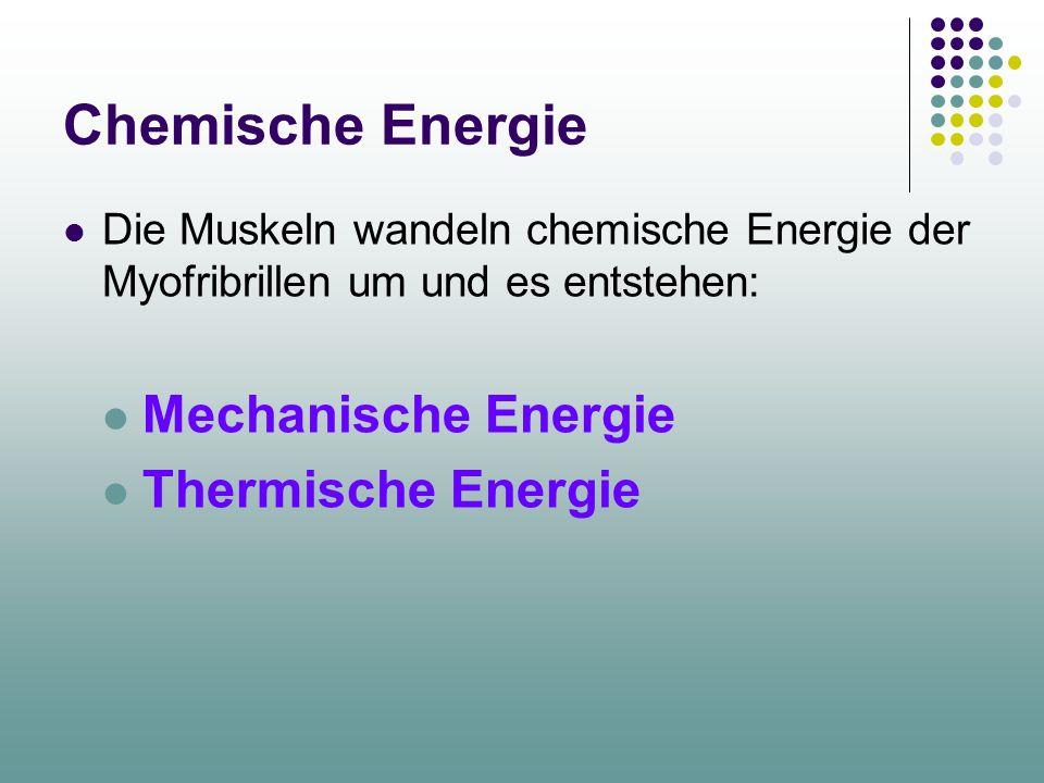 Chemische Energie Mechanische Energie Thermische Energie