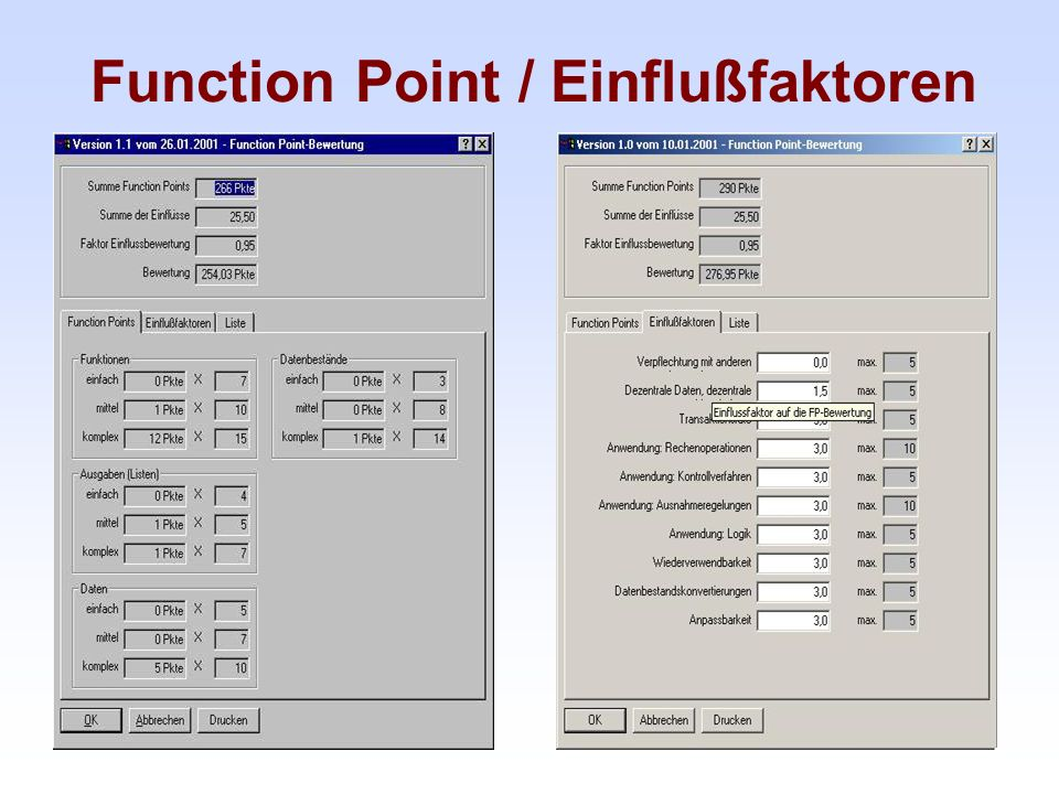 Function Point / Einflußfaktoren