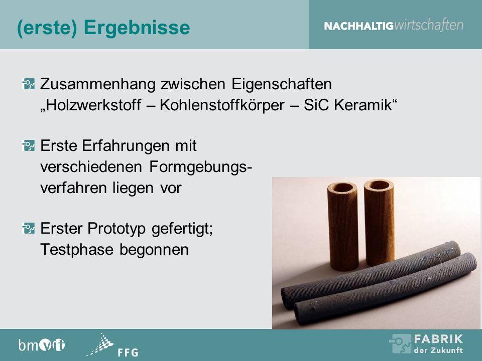 """(erste) Ergebnisse Zusammenhang zwischen Eigenschaften """"Holzwerkstoff – Kohlenstoffkörper – SiC Keramik"""