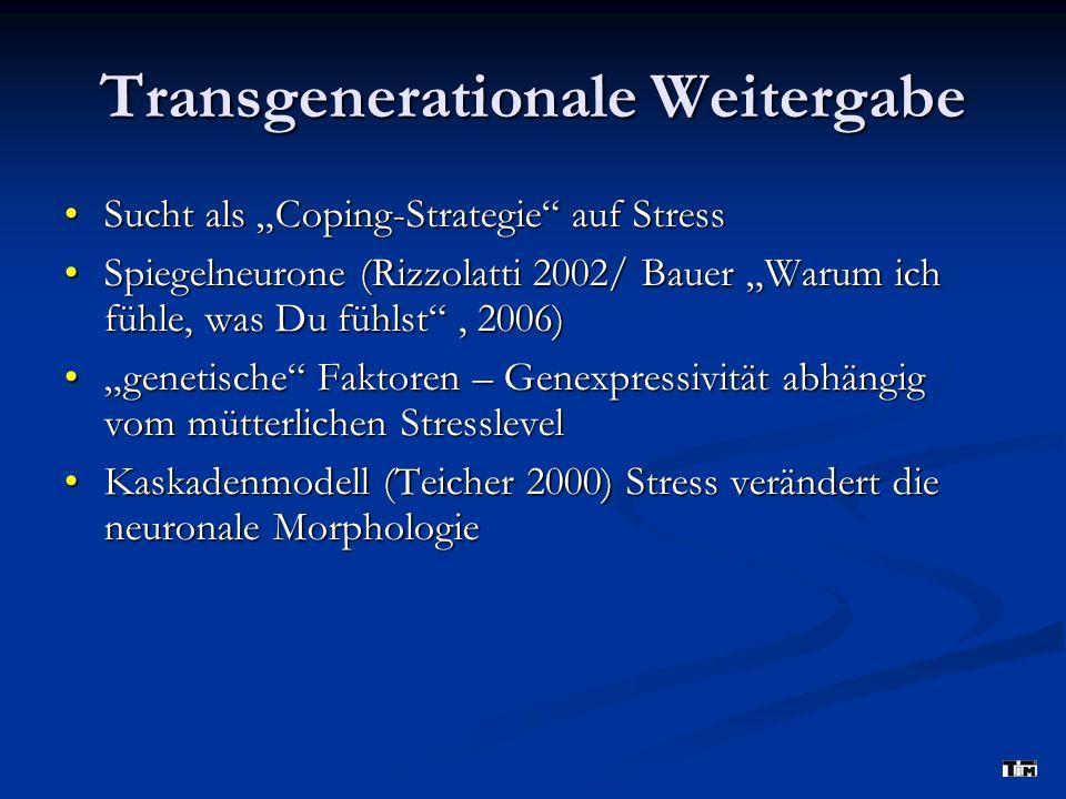 Transgenerationale Weitergabe