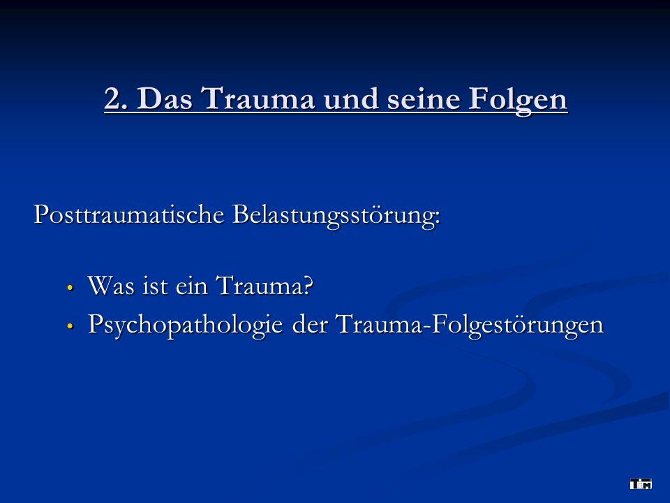2. Das Trauma und seine Folgen
