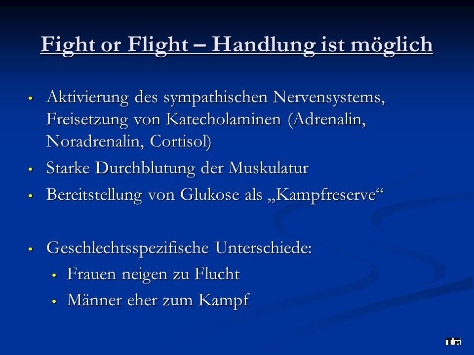 Fight or Flight – Handlung ist möglich