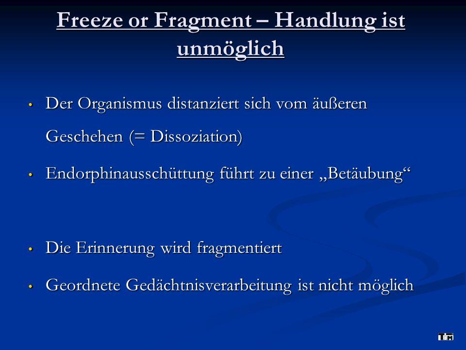 Freeze or Fragment – Handlung ist unmöglich