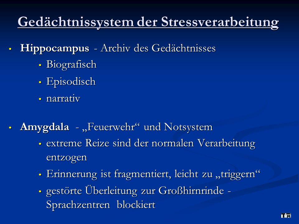 Gedächtnissystem der Stressverarbeitung