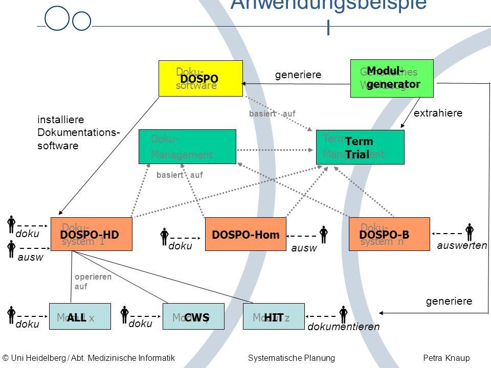         Anwendungsbeispiel Doku- software Modul- generator