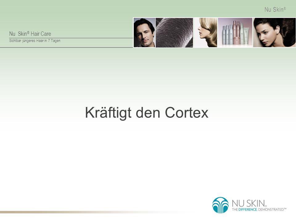 Kräftigt den Cortex