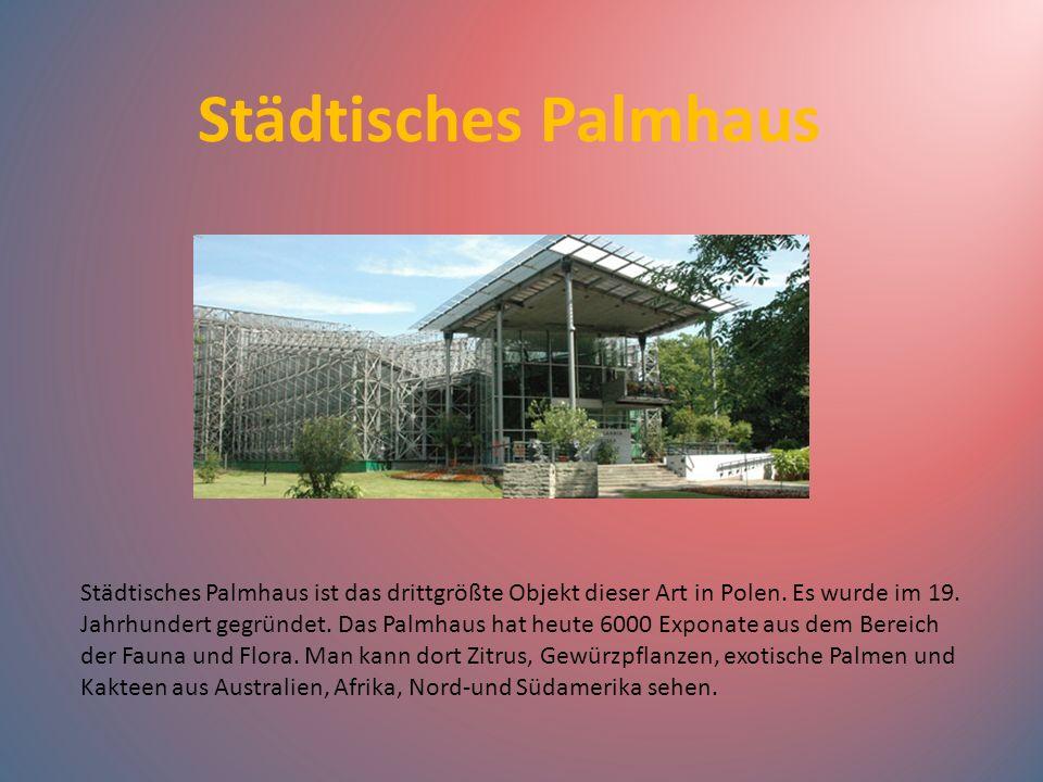 Städtisches Palmhaus
