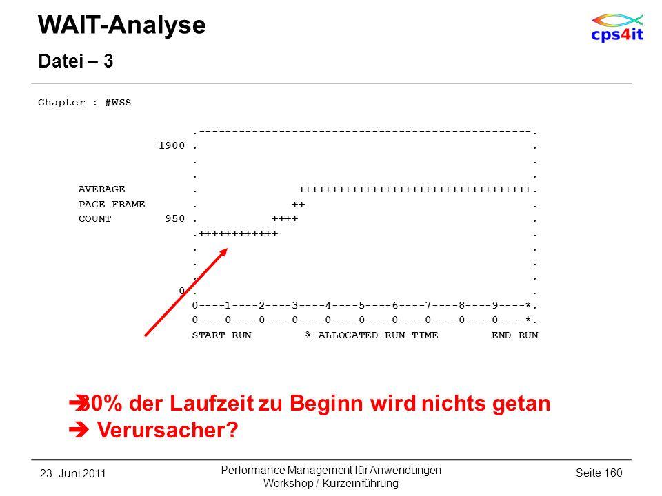 WAIT-Analyse 30% der Laufzeit zu Beginn wird nichts getan