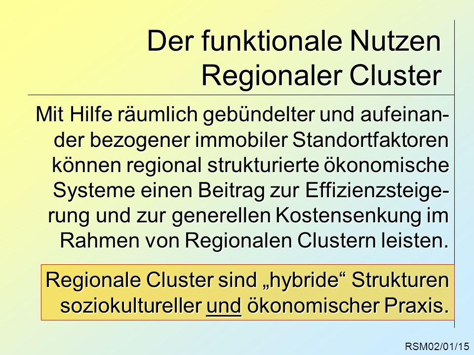 Der funktionale Nutzen Regionaler Cluster