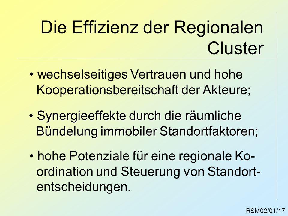 Die Effizienz der Regionalen Cluster