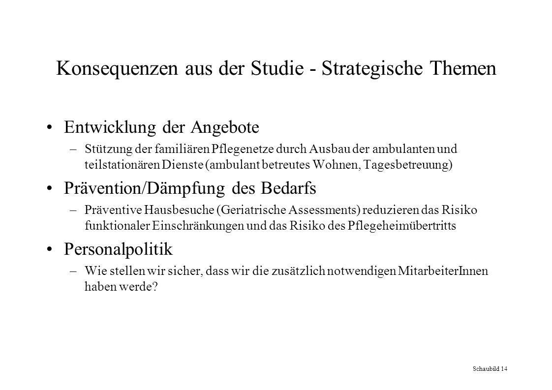 Konsequenzen aus der Studie - Strategische Themen