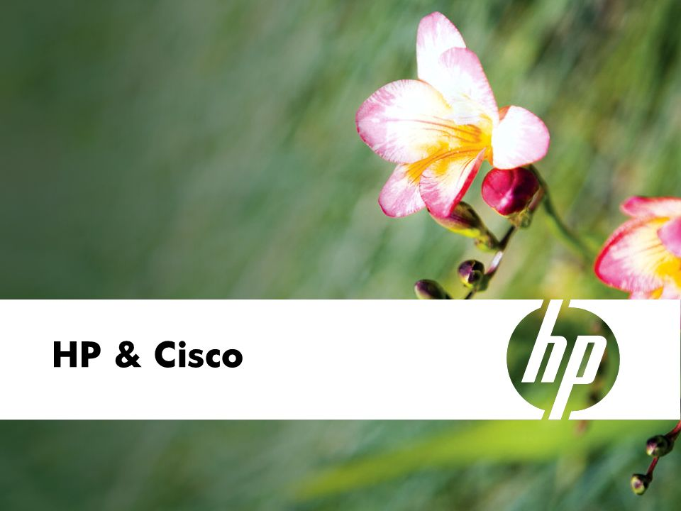 HP & Cisco 01. April 2008