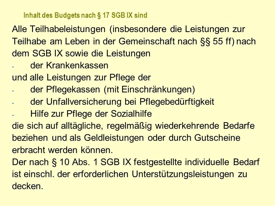 Inhalt des Budgets nach § 17 SGB IX sind