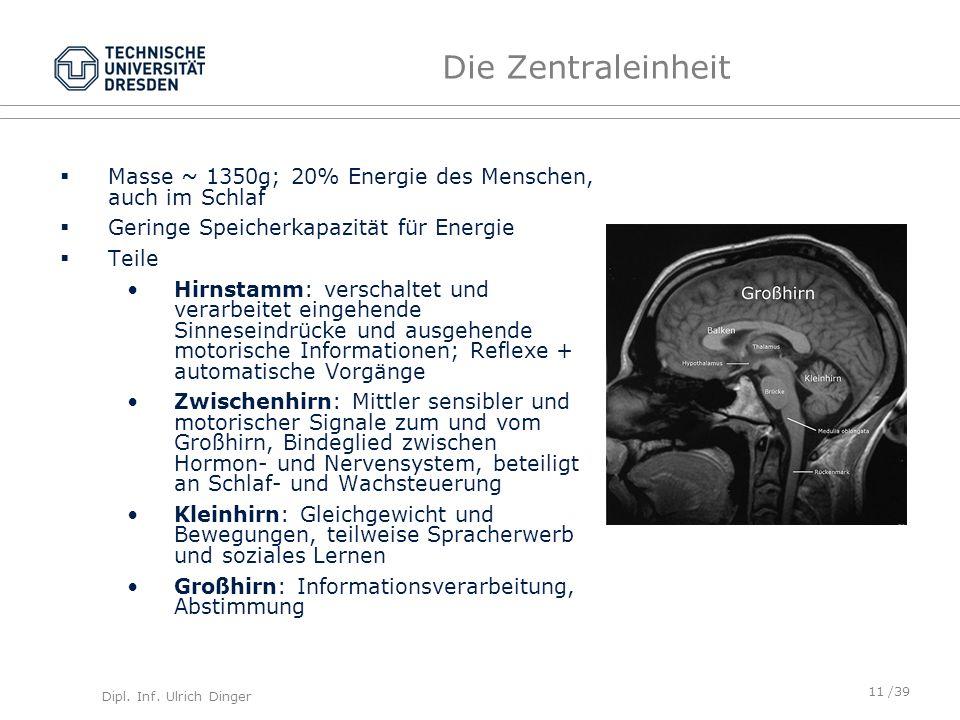 Die Zentraleinheit Masse ~ 1350g; 20% Energie des Menschen, auch im Schlaf. Geringe Speicherkapazität für Energie.