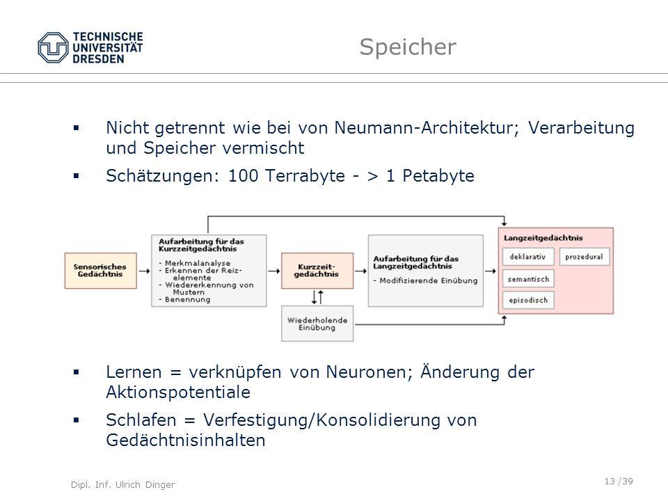 Speicher Nicht getrennt wie bei von Neumann-Architektur; Verarbeitung und Speicher vermischt. Schätzungen: 100 Terrabyte - > 1 Petabyte.