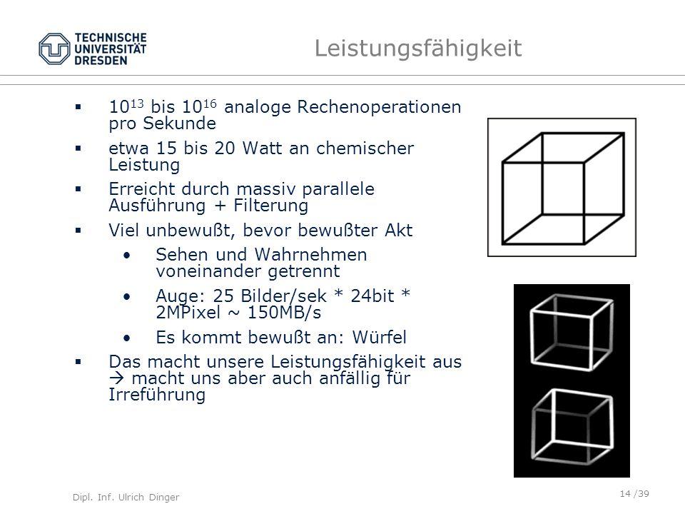Leistungsfähigkeit 1013 bis 1016 analoge Rechenoperationen pro Sekunde